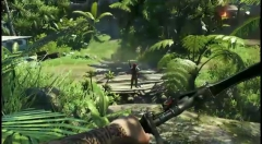 3   Far Cry 3 action